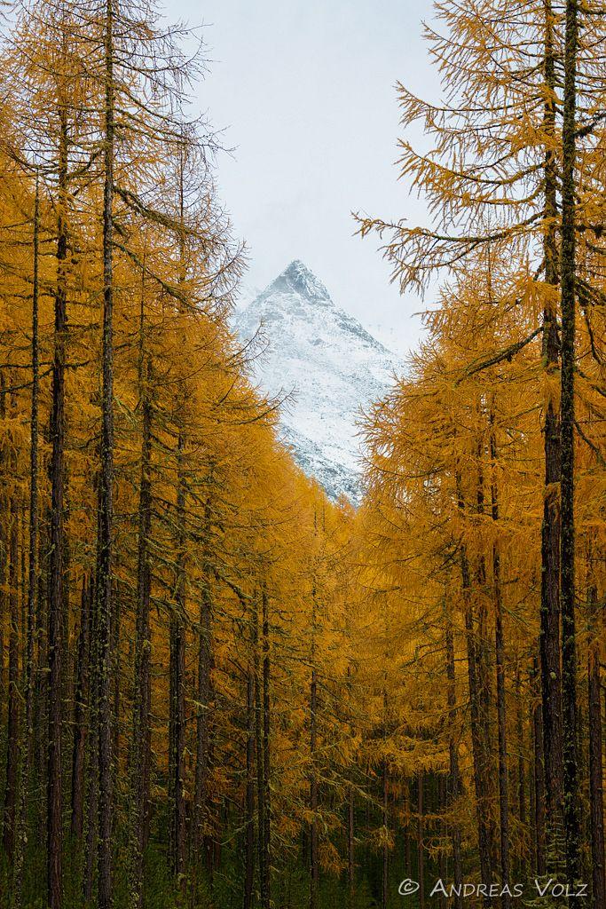 Landschaft792.jpg