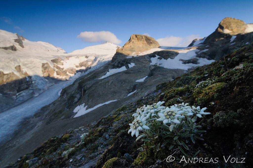 Landschaft345.jpg
