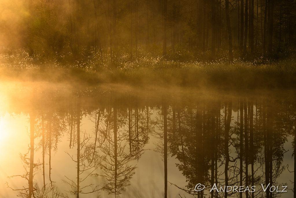 Landschaft954.jpg