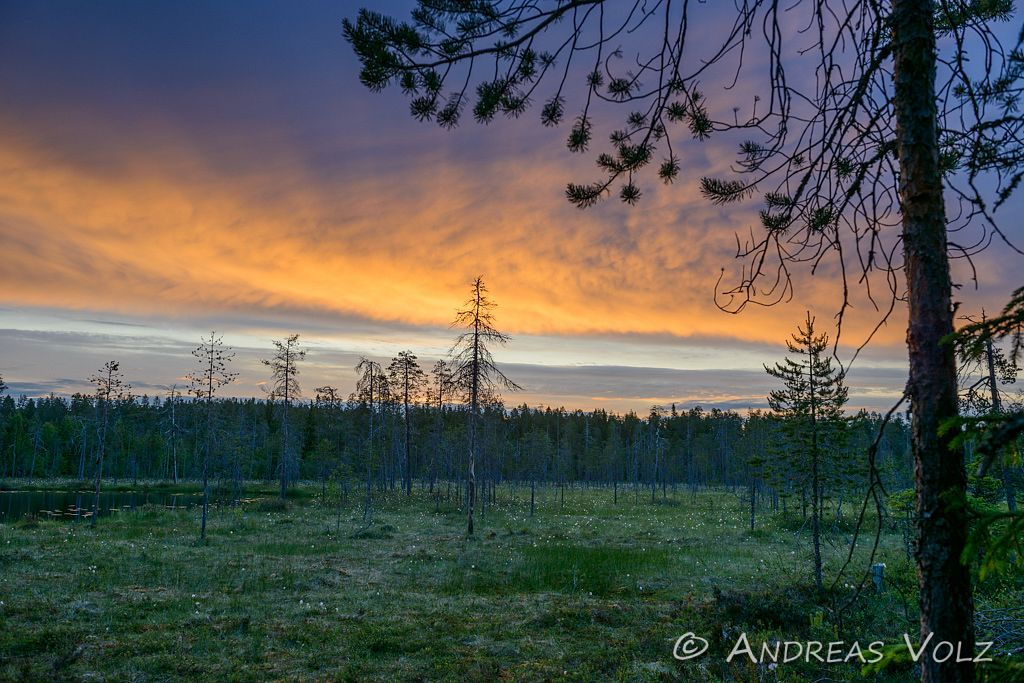 Landschaft955.jpg