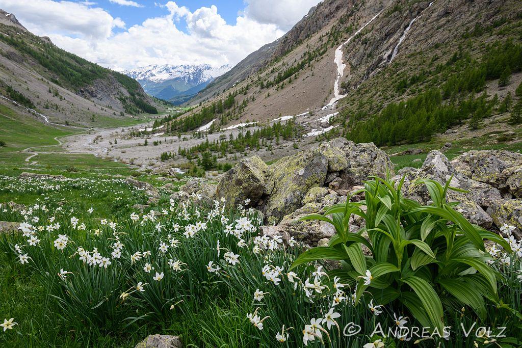 Landschaft1472.jpg