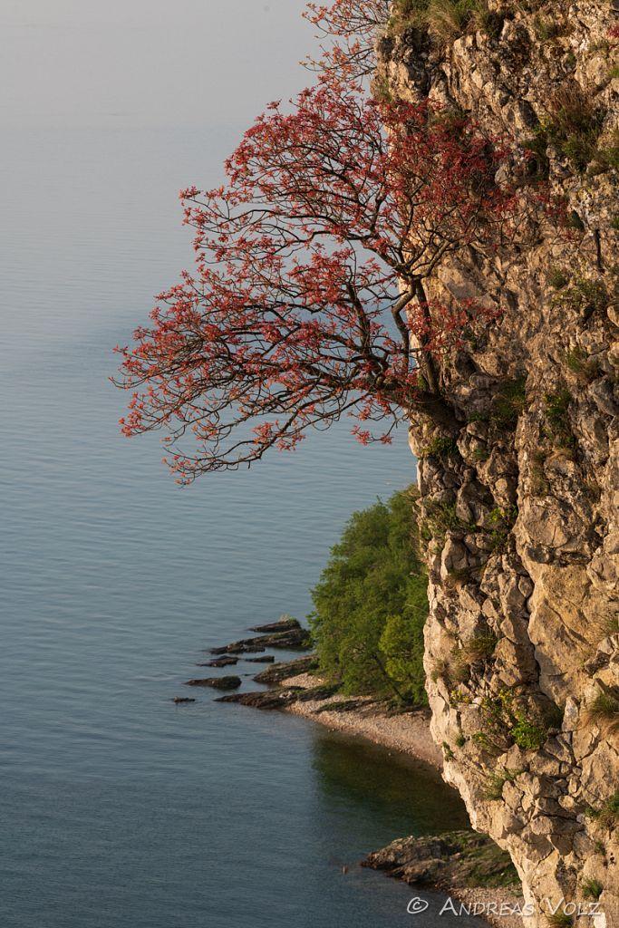 Landschaft1676.jpg