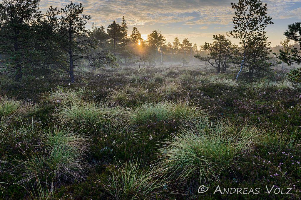 Landschaft890.jpg