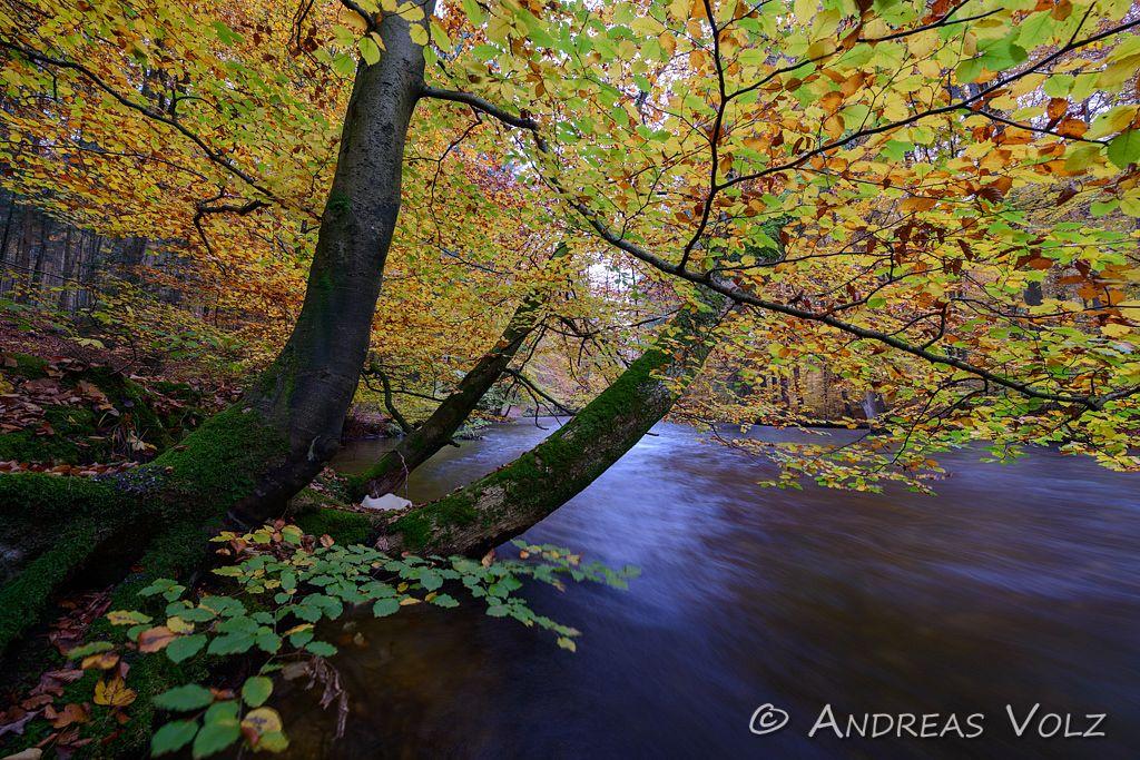 Landschaft592.jpg