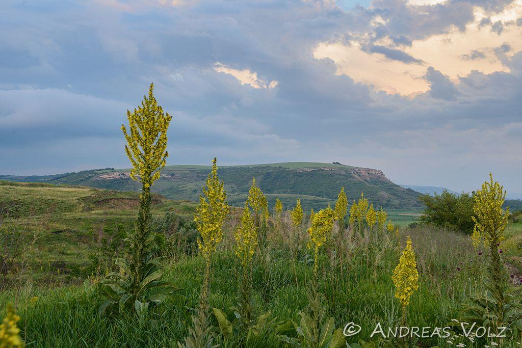 Landschaft732.jpg
