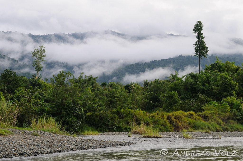 Landschaft306.jpg