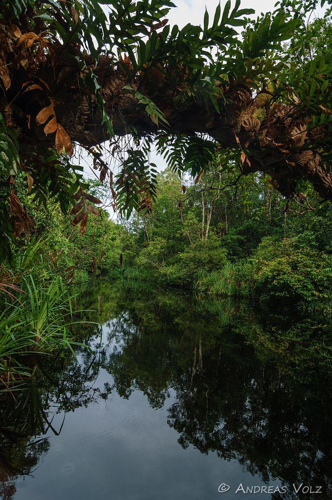 Landschaft302.jpg