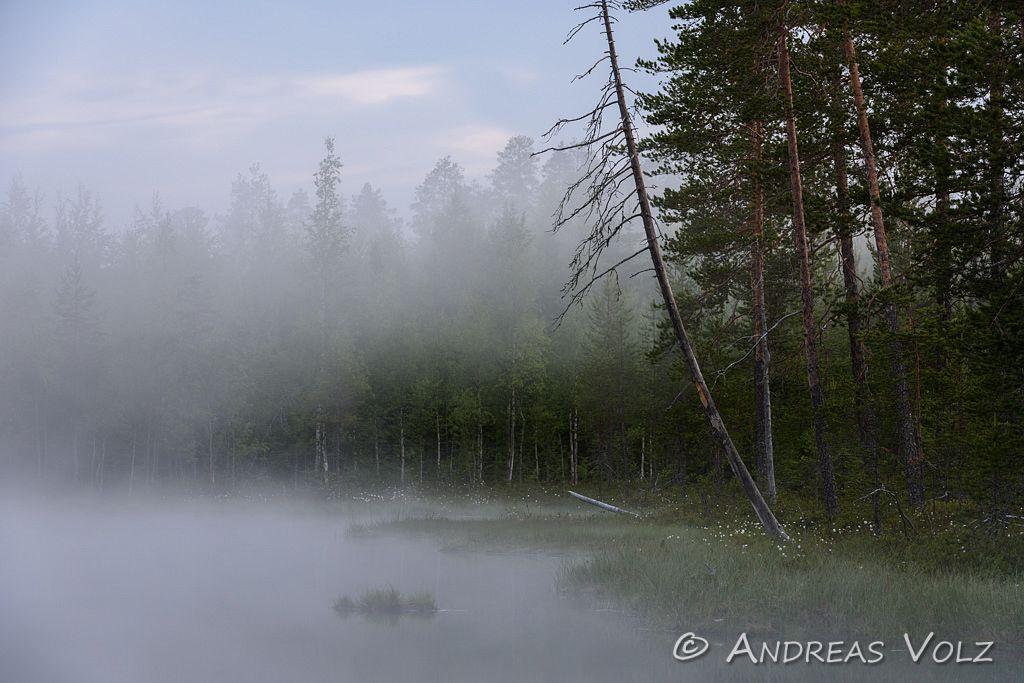 Landschaft953.jpg