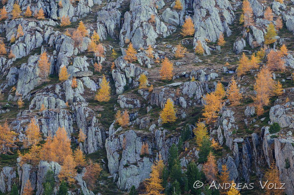 Landschaft416.jpg