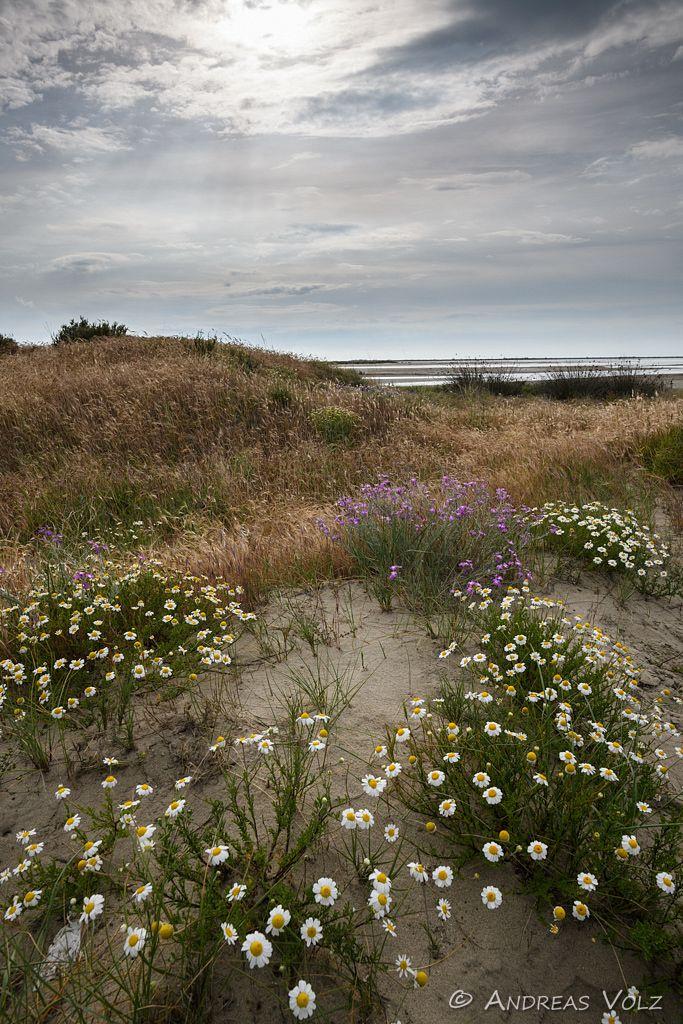 Landschaft1429.jpg
