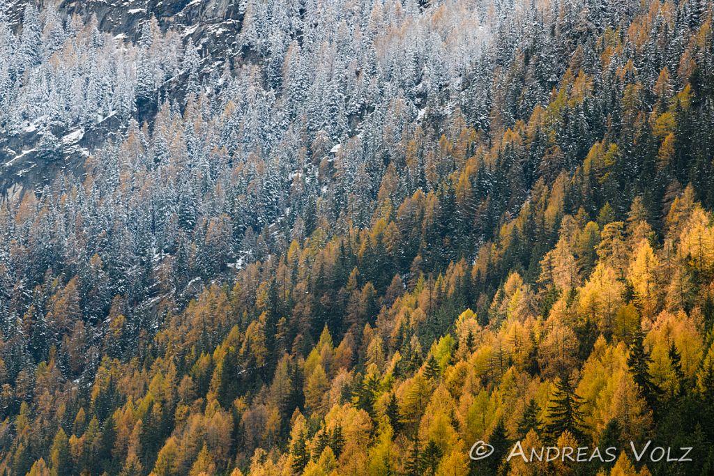 Landschaft1611.jpg